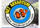 net-akvaryum-pet-shop